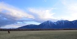 Stunning Carson Valley