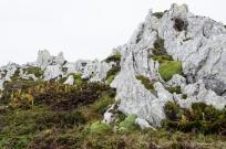 Falklands-4
