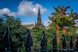 Lush Edinburgh