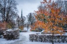 Tallinn Winter Park