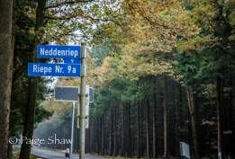 Neddenriep