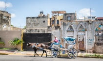 horse-buggy-santo-domingo-dominican-republic-2