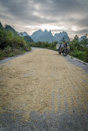 drying-rice-karst-guilin-china