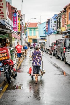 little-india-shopping-cart-singapore