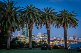 palm-trees-sunset-city-view-perth-western-australia