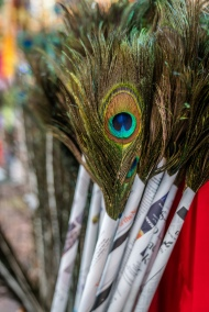 peacock-feathers-market-little-india-singapore