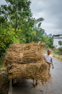 rice-farmer-choayang-village-guilin-china