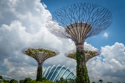 supertree-grove-garden-by-bay-singapore