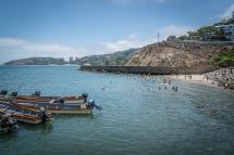swimming-fish-kopi-market-port-moresby-png