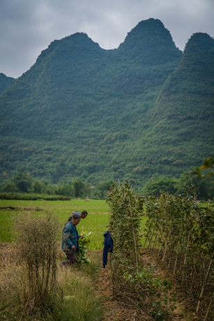 vegatable-farmer-choayang-village-guilin-china