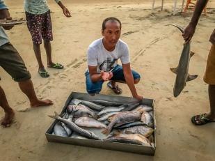 bucket-fish-menu-beach-dinner-goa-india