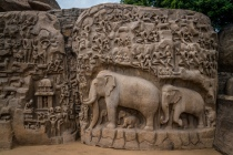 elephant-carvings-mahabalipuram-tamil-nadu-india