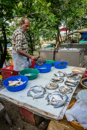fish-market-kochi-india