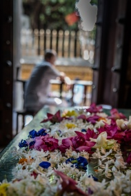 flowers-closeup-man-window-kelaniya-temple-sri-lanka