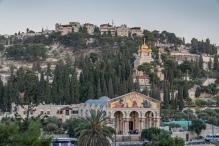 gethsemane-gardens-mount-olives-jerusalem