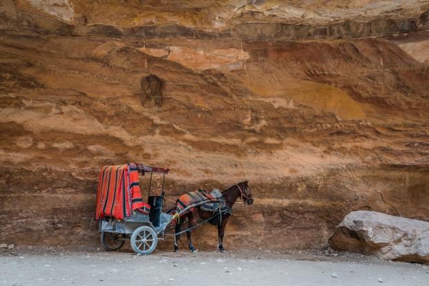 horse-carriage-petra-jordan