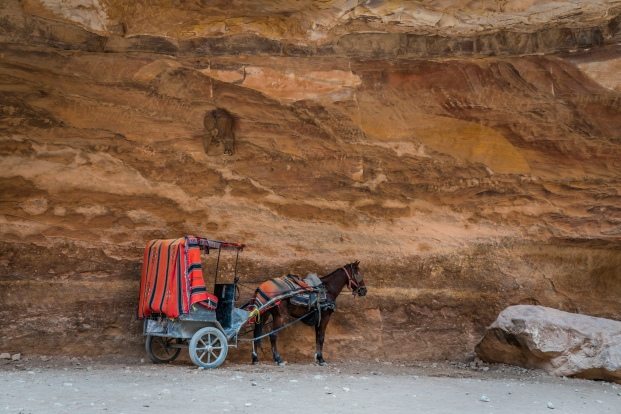 horse-carriage-petra-jordan