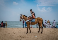 horse-ride-bengal-bay-beach-tamil-nadu-india