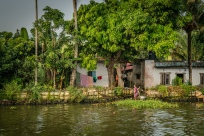 shore-life-alleppey-vembanad-lake-backwaters-kochi-india