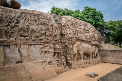 unesco-elephant-carvings-mahabalipuram-tamil-nadu-india