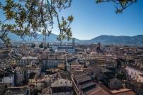 view-torre-guinigi-san-michelle-lucca-italy