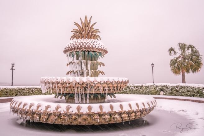 pineapple-fountain-charleston-snowy-winter