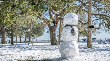 white-point-park-snowman-charleston