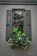 gray-house-window-box-greenery