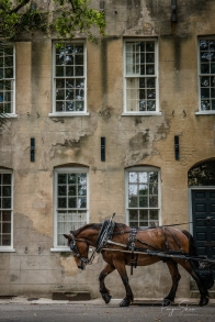 horse-carriage-old-building