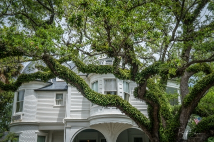 live-oak-historic-white-house