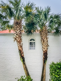 palms-white-brick-tin-roof-house