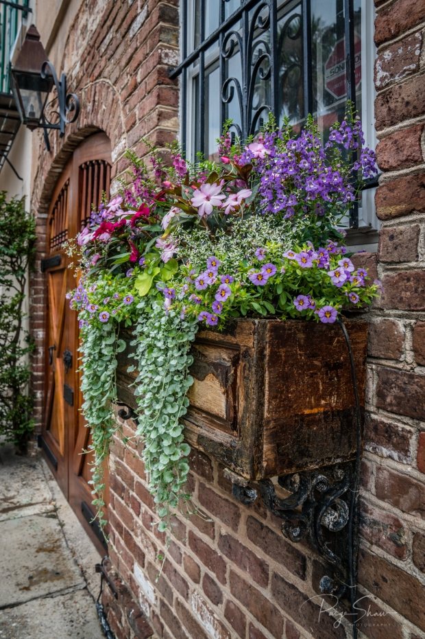 window-box-door-flowers-lantern