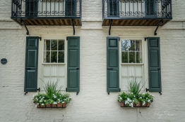 windowbox-charleston-flowers-greenery-shutters