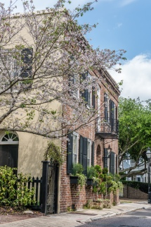brick-house-flowering-tree-charleston