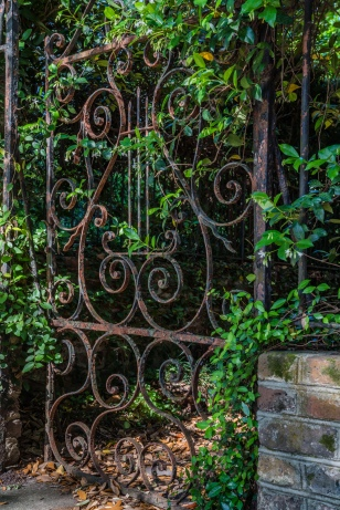 rusted-iron-gate-charleston