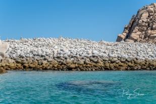 baja-sea-cortez-rocks-beach-turquoise-2