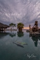 sunrise-pool-palms-fish-statue